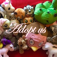 Cute Plushies Looking for New Home!